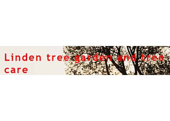 Linden tree garden and tree care