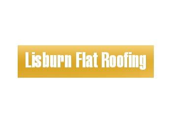 Lisburn Flat Roofing