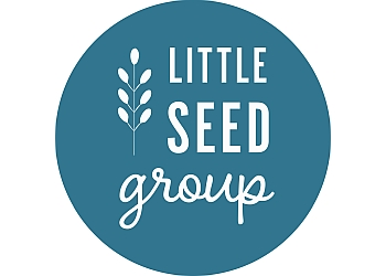 Little Seed Group