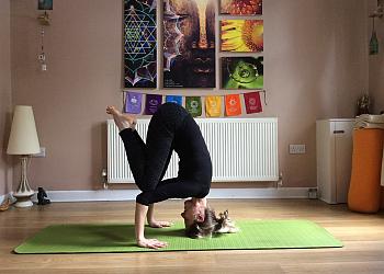 LiveLearn.Yoga