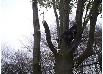 Liverpool Tree Care Services Ltd.