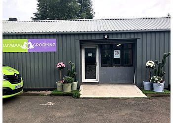 Love Dog Grooming Ltd.