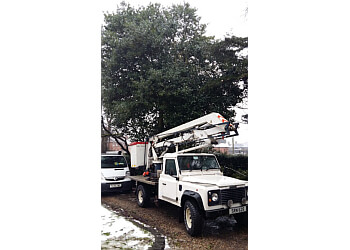 Low Cost Tree Care and Garden Services