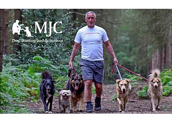 MJC Dog Training