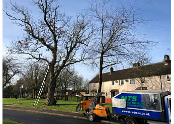MTS Tree Services Ltd