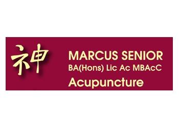 Marcus Senior