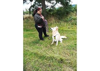Mavericks & Rogues Dog Services