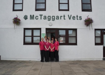 McTaggart Vets
