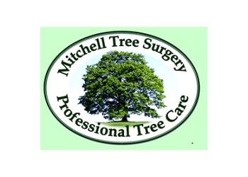 Mitchell Tree Surgery