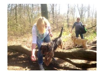 Moogles Pet Care Limited