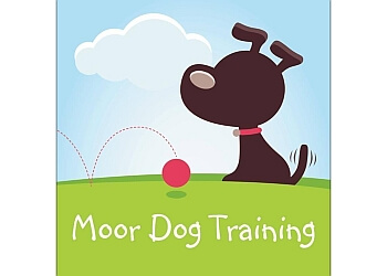 Moor Dog Training