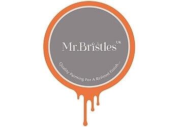 Mr Bristles