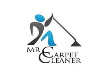 Mr Carpet Cleaner