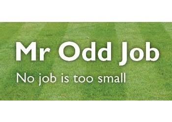 Mr Odd Job