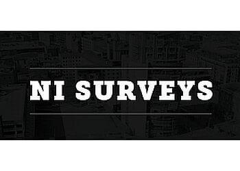 NI Surveys
