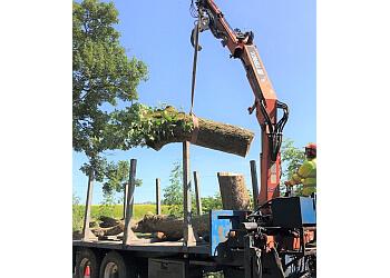N & J Tree Services Ltd