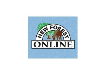 NEW FOREST ONLINE LTD.