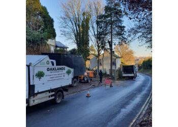 Oaklands Tree Specialists Ltd.