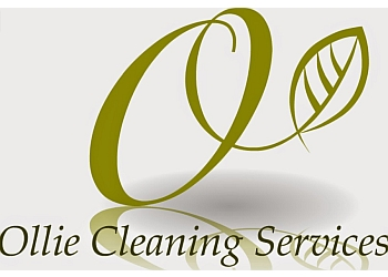 Ollie Cleaning Services Ltd.
