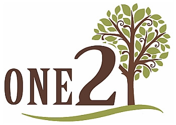 One 2 Tree Surgery Ltd