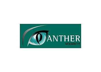 Panther Security Systems Ltd.