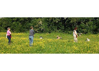 Pauline Whittaker Dog Training School