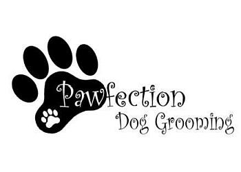 Pawfection Dog Grooming