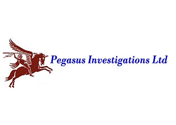 Pegasus Investigations Ltd.