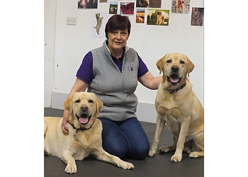 Perth Dog Training