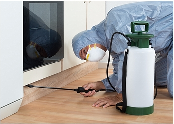 Pest Control & Hygiene Services
