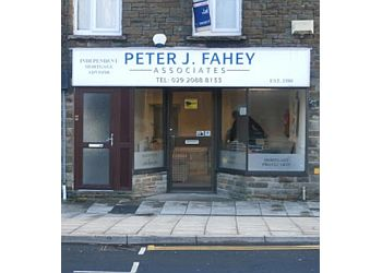 Peter J Fahey Associates