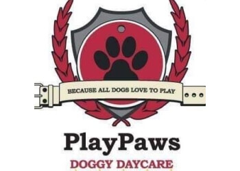 PlayPaws Doggy Daycare