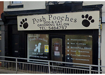 Posh Pooches