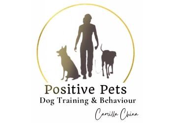 Positive Pets Dog Training & Behaviour