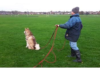 Pozidog Canine Services