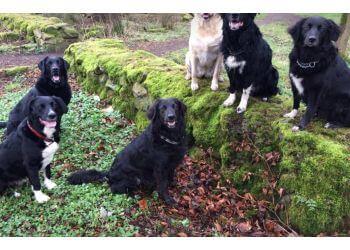 Precious Paws Dog Walking & Training