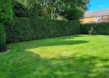 Premier Grounds & Garden Maintenance