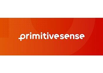 PrimitiveSense Ltd