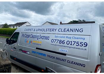 Pro Carpet Cleaning Swansea
