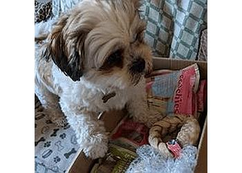 Purely Pet Supplies Ltd