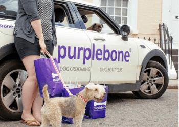 Purplebone Shop & Dog Grooming