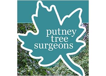 Putney Tree Surgeons
