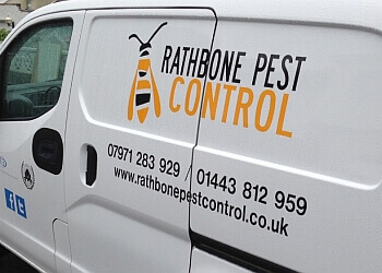 3 Best Pest Control In Caerphilly