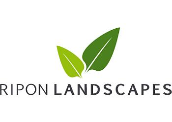 Ripon Landscapes