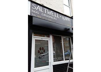 Saltwell Bark
