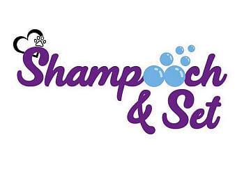 Shampooch & Set
