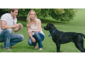 Simon Biffen Photography