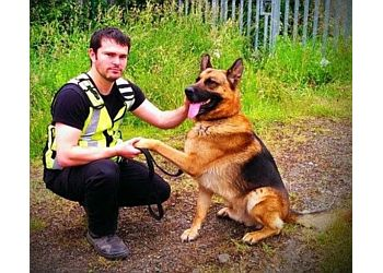 Sit Happens Dog Training