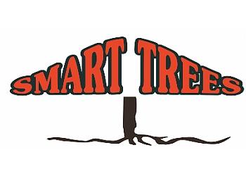 Smart Trees Ltd