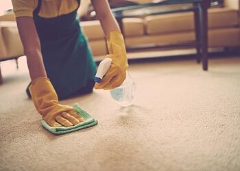 Spa Cleaning & Maintenance Ltd.